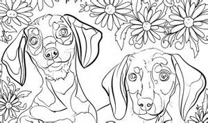 Adult Coloring Pages Free Printables Dogs