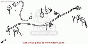 Honda Atc350x 1985 Usa Wire Harness