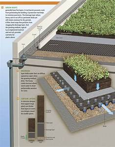 How Green Roofs work. Click image to enlarge & visit the ...
