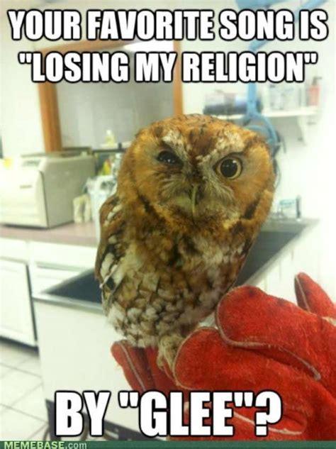 Funny Owl Meme - funny glee compilation