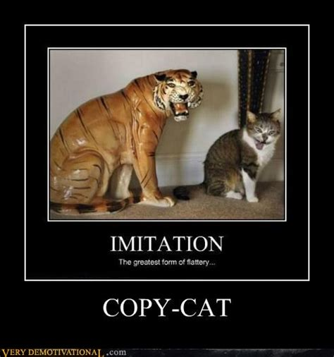 Copy Cat Meme - funny photo of the day for thursday 17 november 2011 from site very demotivational copy cat