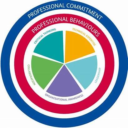 Standards Professional Cieh Chartered Status Framework Standard
