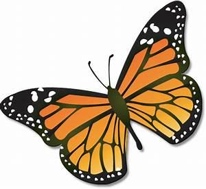Butterflies butterfly clip art clipart - Clipartix