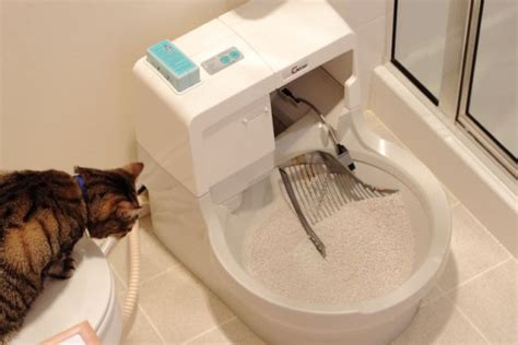 automatic self cleaning litter box catgenie litter box the clean fresh smell of civilization