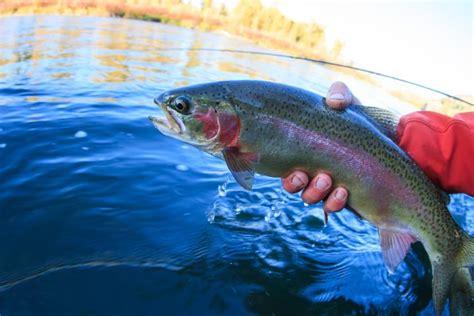 Kādēļ zivju audzēšana uz sauszemes ierīkotos baseinos ir ...