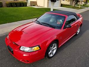1999 Ford Mustang Cobra for Sale | ClassicCars.com | CC-1173025