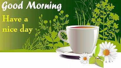 Morning Amazing