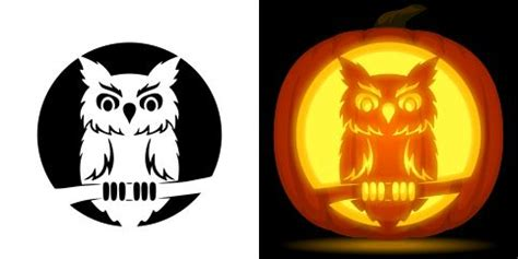 pin  muse printables  pumpkin carving stencils owl
