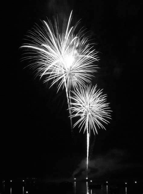 july black and white things to do in nc when you re bored july 1 4 the grey