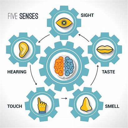 Imagery Senses Language Appeals Vivid Reader Experience