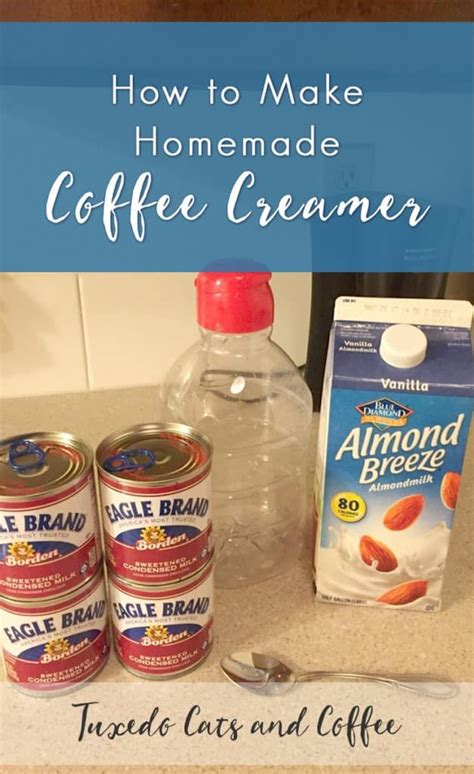 A good coffee creamer should consist of two basic foundation ingredients: How to Make Homemade Coffee Creamer | Homemade coffee creamer, Coffee creamer recipe, Healthy ...
