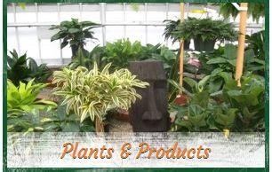 garden center knollwood garden center and landscaping garden center Knollwood