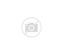 Anna Nicole Smith s Da...