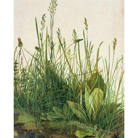 Kunstdruck Fototapete Albrecht Dürer Das Große Rasenstück