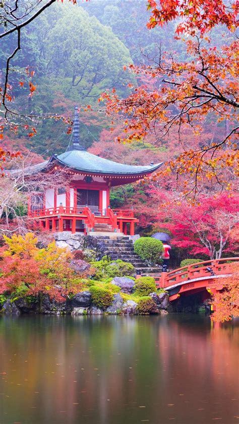 wallpaper japan kyoto park pagoda colorful leaves