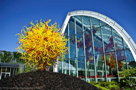 chihuly garden and glass seattle photo tour chihuly garden and glass