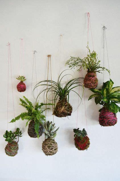 Pflanzen Bilder Selber Machen by Pflanzenbilder Selber Machen Pflanzen Bilderrahmen Zum
