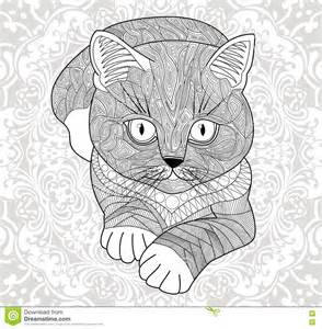 Abstract Cat Coloring Pages for Adults
