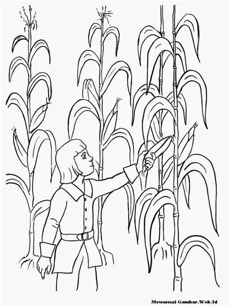 Gambar Mewarnai Gambar Sayuran di Rebanas - Rebanas