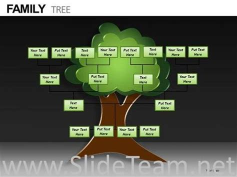 editable family tree powerpoint templates powerpoint diagram