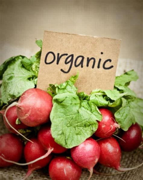 grub organic which foods in your fridge should be organic kodjoworkout