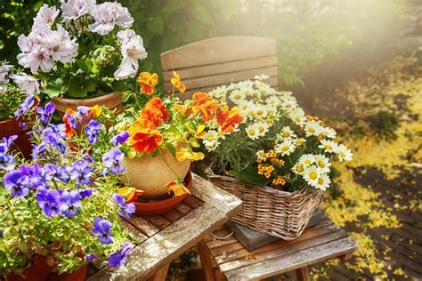 albuquerque home garden show
