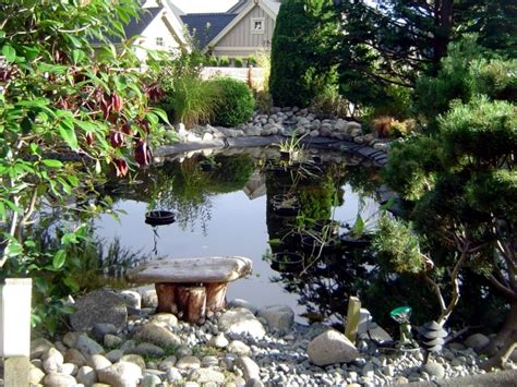 build garden pond a water garden design options