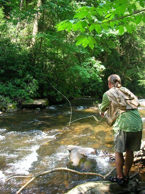fannin county offers trout fishing   kind coastal