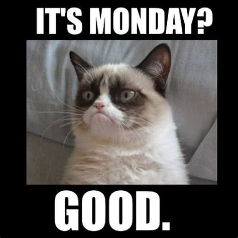 Memes About Monday - 59 monday meme pictures to try and make your weekend longer