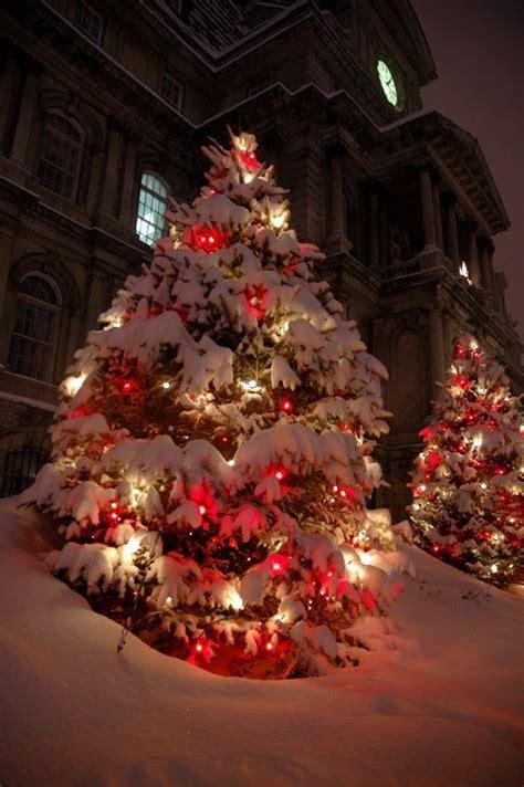 christmas lights and fresh snow christmas pinterest