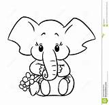 Elephant Coloring Baby Pages sketch template
