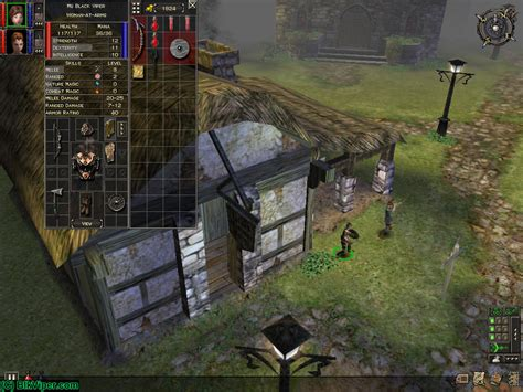microsoft dungeon siege black viper 39 s dungeon siege character ms black viper