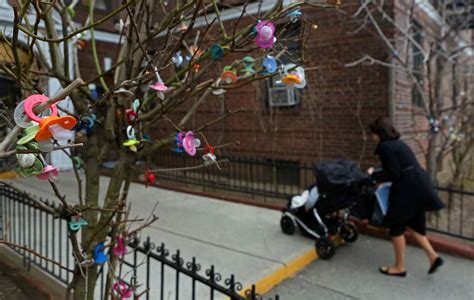 covered  pacifiers trees signal  rite  passage