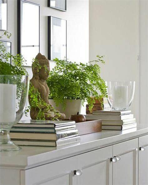 Zimmerpflanzen Feng Shui by Feng Shui Bilder Erfahren Sie Die Bedeutung Der Typischen