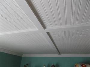 pvc beadboard sheets home furniture ideas With plastic tongue and groove for bathrooms