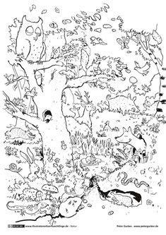 die  besten bilder von mandala tiere   malbuecher mandala tiere und malboegen