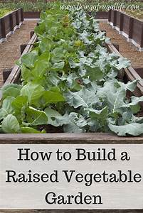 How to build a raised vegetable garden for How to build a raised vegetable garden