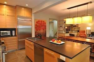 Open Floor Plan Kitchen - Contemporary - Kitchen