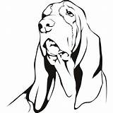 Hound Basset Coloring Dog Pages Drawing Decal Sticker Drawings Template Printable Sketch Wall Vinyl Sheet Getdrawings Stickers Clipartmag Getcolorings sketch template