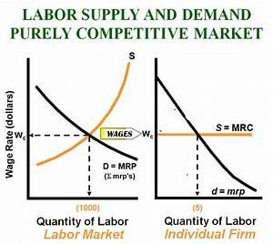 Unit 5  Labor Markets   Bhagavadeepa