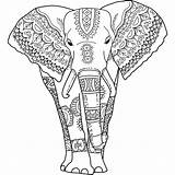 Coloring Elephant Adults Pages India sketch template
