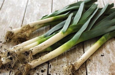 cuisiner un poireau quels sont les fruits et légumes d 39 automne et où les