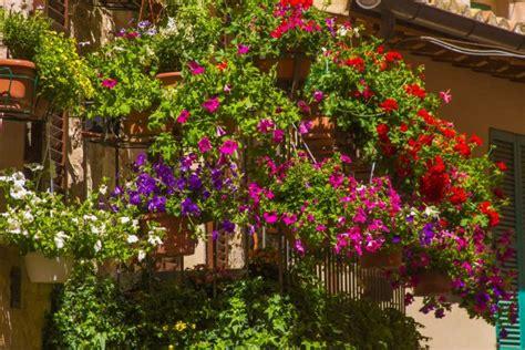 terrazzo e balcone come arredare il balcone con i fiori non sprecare