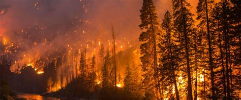 The American North West Is On Fire Once Again And Only One ...