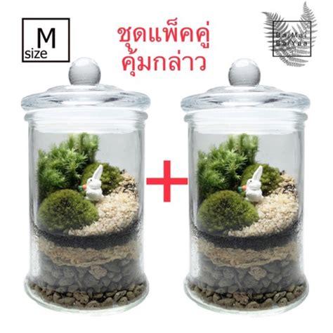 ชุดจัดสวนโหลแก้ว DIY Size M+M   Shopee Thailand