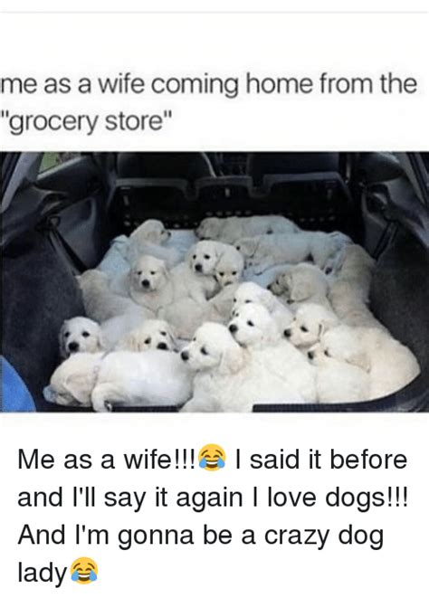 Crazy Dog Lady Meme - me as a wife coming home from the grocery store me as a wife i said it before and i ll say