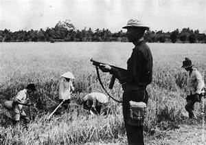Image Gallery japan rice fields workers