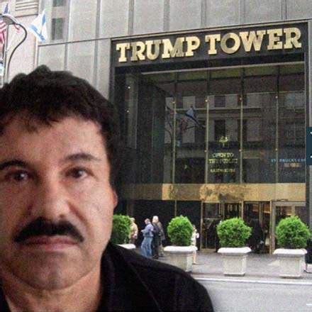 El Chapo Memes - in trump we trust www dada nyc blog