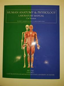 Human Anatomy U0026 Physiology Laboratory Manual 10th