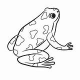 Frog Poison Dart Coloring Cartoon Clipart Drawing Vector Frogs Clip Illustration Drawings Amphibian Vectors Outlined Royalty Outline Illustrations Fotosearch Shutterstock sketch template